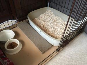 猫砂 ゲージ